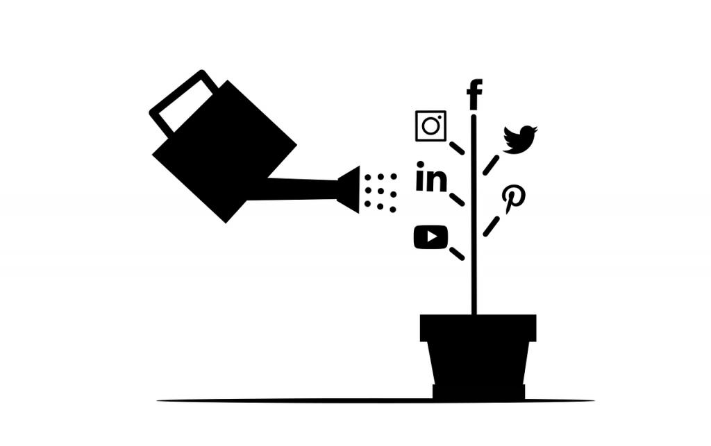 Social Media Icons Pot Flower Pot - mohamed_hassan / Pixabay