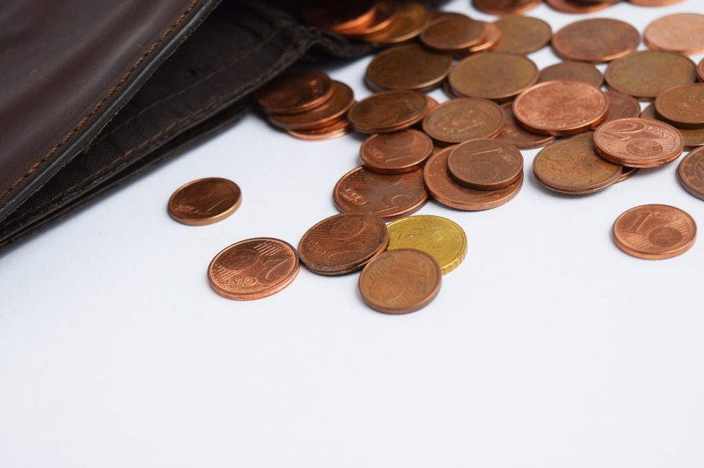 Wallet Coins Euro Money Exchange  - Mimzy / Pixabay